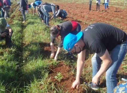 Journée productive développée par plus de 300 jeunes Avilaniens